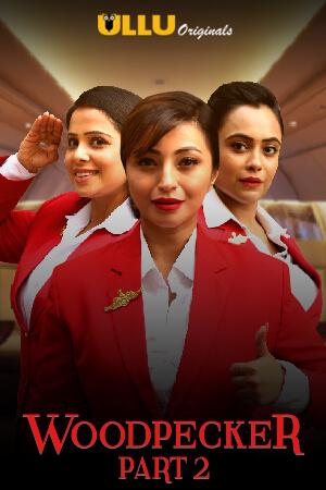 Woodpecker Part: 2 (2020) S01 Hindi Ullu Originals Complete Web Series 720p